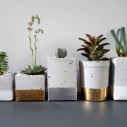 Kaktus Terrarium Beton Deko Zement Blumentopf Gold Silber